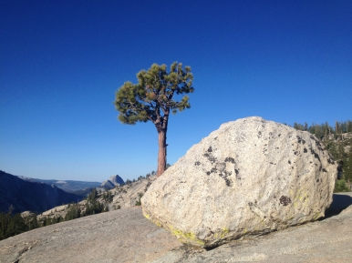 Olmstead Point